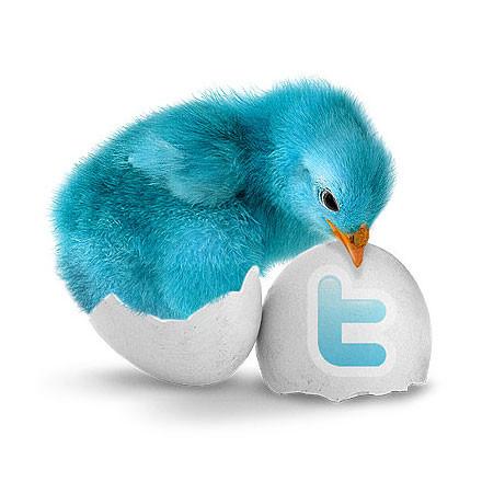 il-fenomeno-twitter
